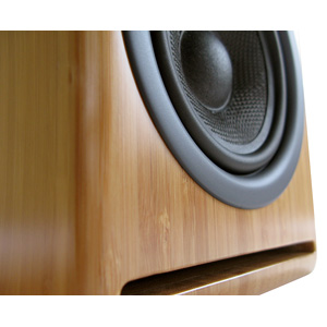 Audioengine - AP4 Passive Bookshelf Speakers