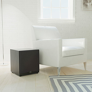 MartinLogan Dynamo 500  Powered Subwoofer