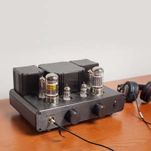 Woo Audio WA2 Single Ended OTL Headphone Amp