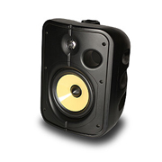 PSB CS1000  Outdoor / Universal Speakers
