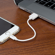 Pangea Audio Lightning to USB A Cable