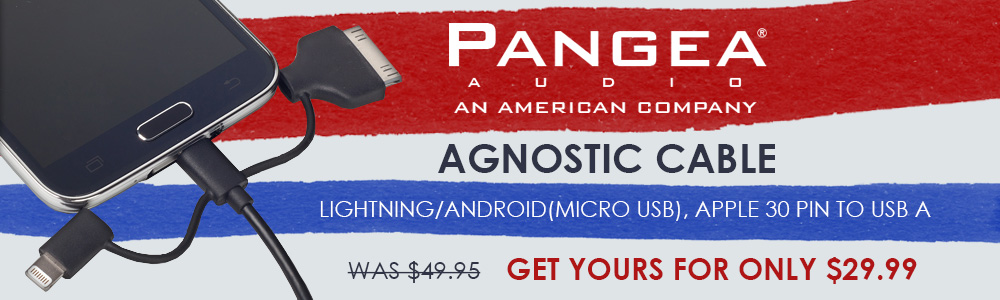 Pangea Audio Agnostic Cable